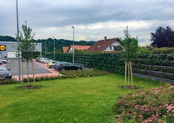 naturawall am Lidl Parkplatz - Lärmschutzwand zu Anwohnern