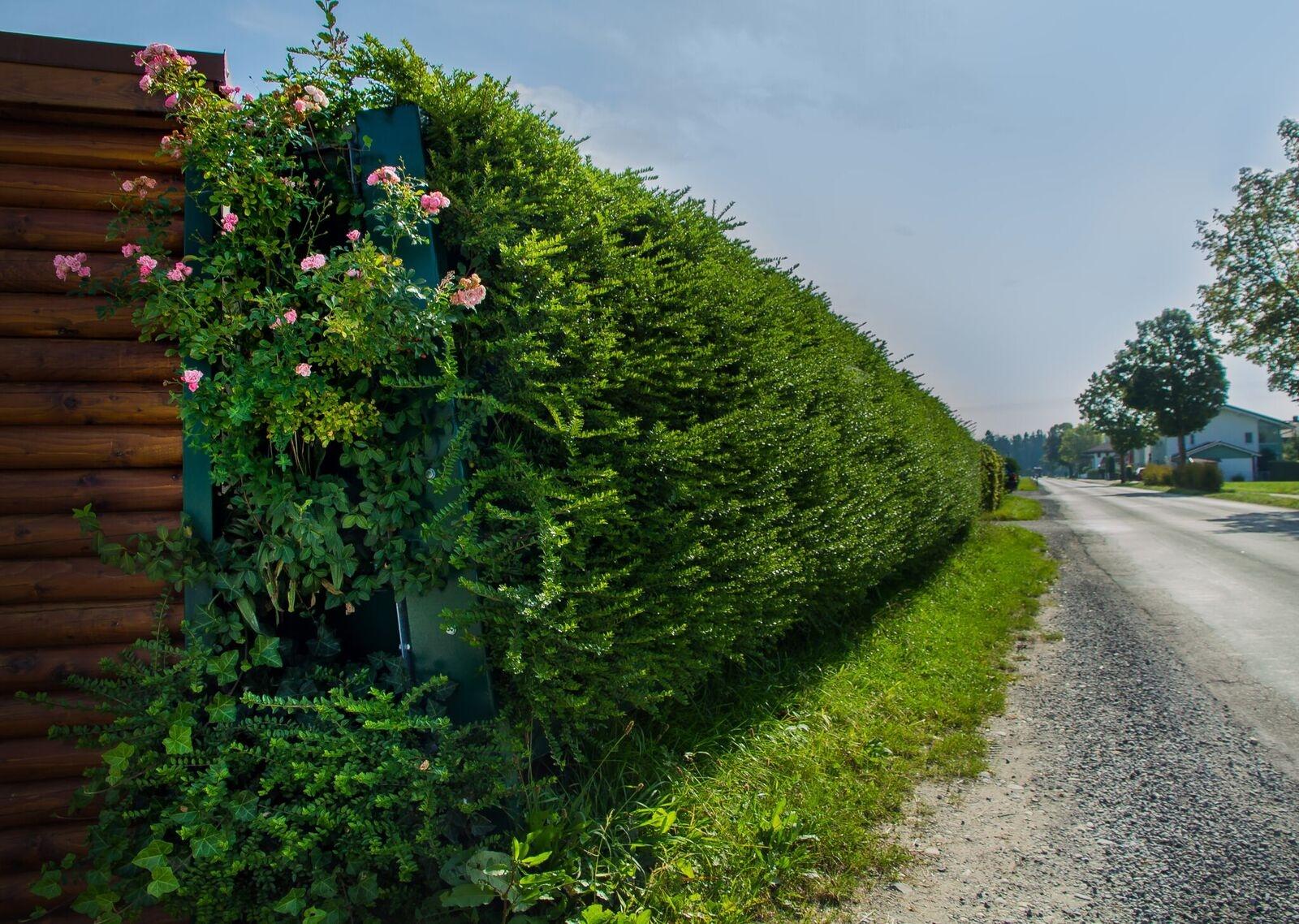 Eine Schallschutzwand an Straße schützt Garten und sorgt für mehr Ruhe