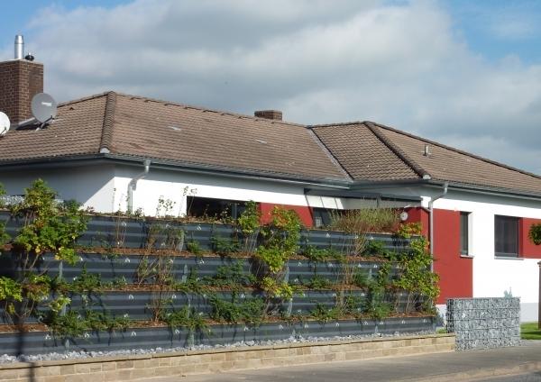 Laermschutzwand Hersfeld-Rotenburg-2