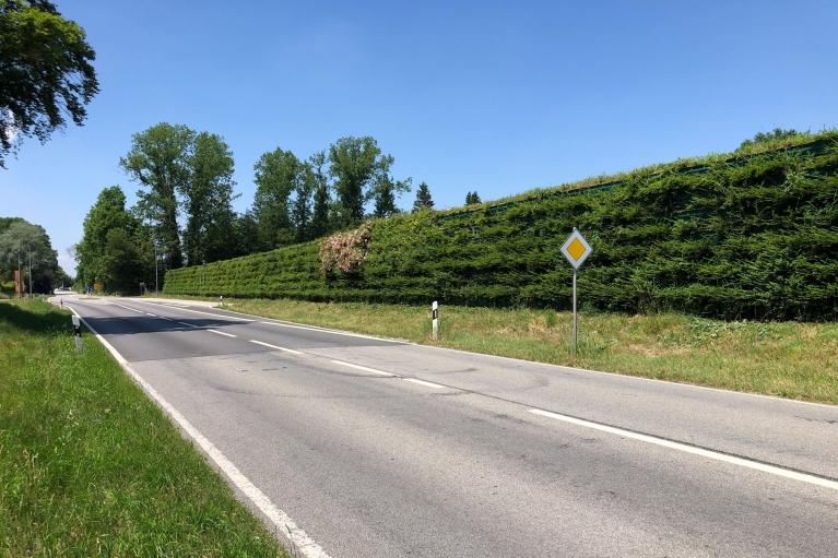 voll begrünte Lärmschutzwand an einer viel befahrenen Straße im Landkreis Mühldorf