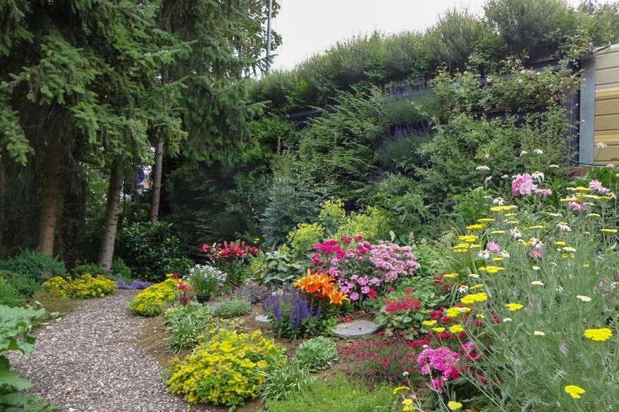 Blick vom Garten Richtung Lärmschutzwand