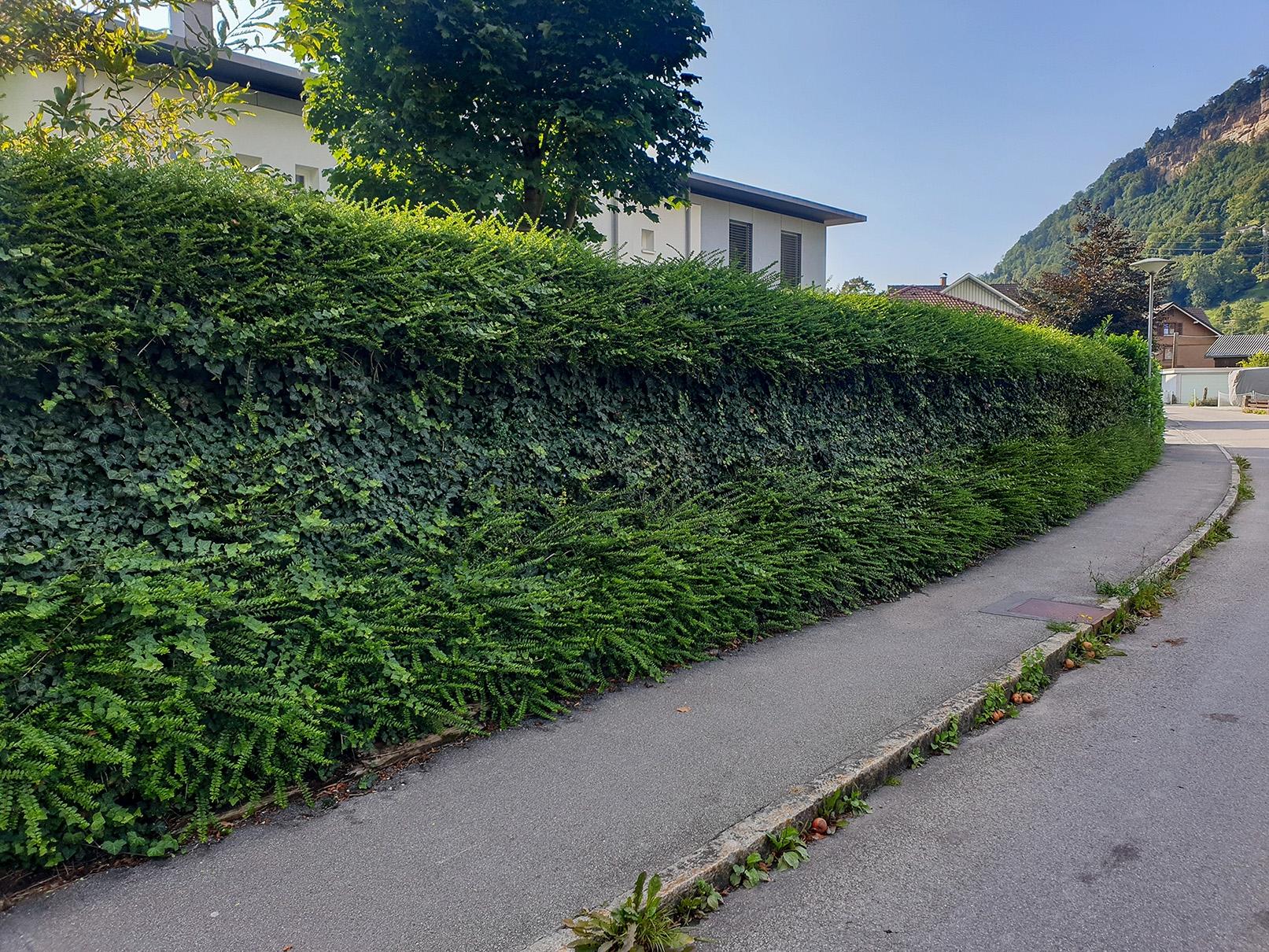 Lärmschutz für den Garten mit naturawall